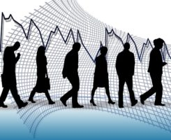 recherche-emploi-plateforme-post-n-job-wordpress-agence-web-fair