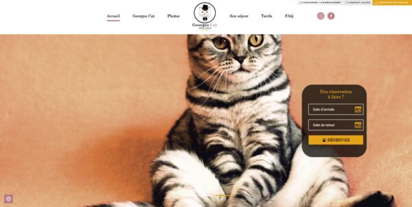creation-referencement-site-web-cms-wordpress-Hotel-Georges-Cat